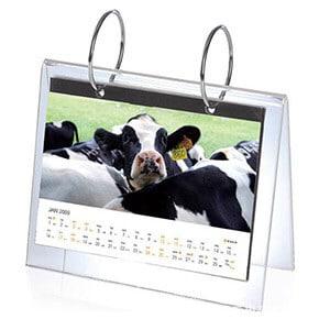 Custom Desktop Acrylic Calendar Printing